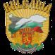 Български аватар